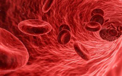 Krank durch Cholesterin